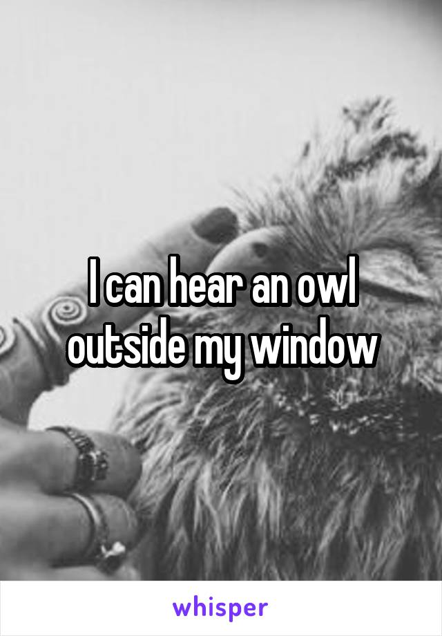 I can hear an owl outside my window