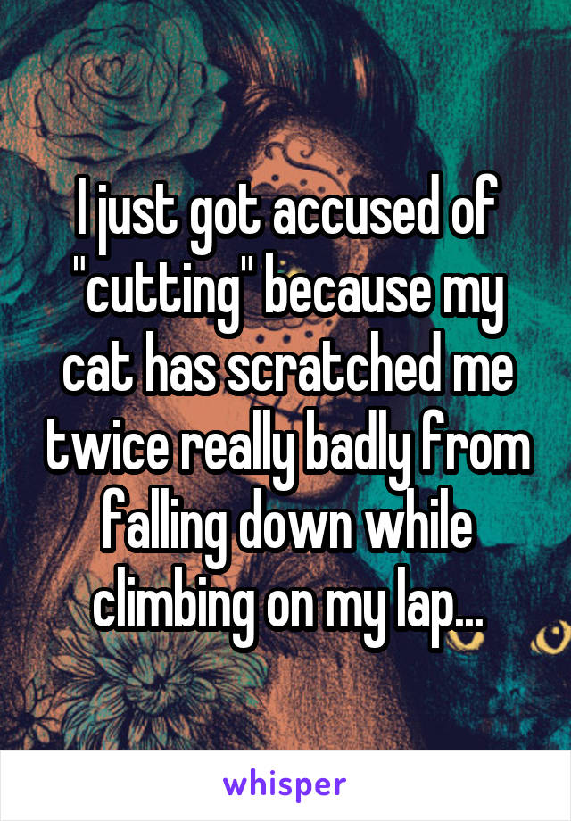 "I just got accused of ""cutting"" because my cat has scratched me twice really badly from falling down while climbing on my lap..."