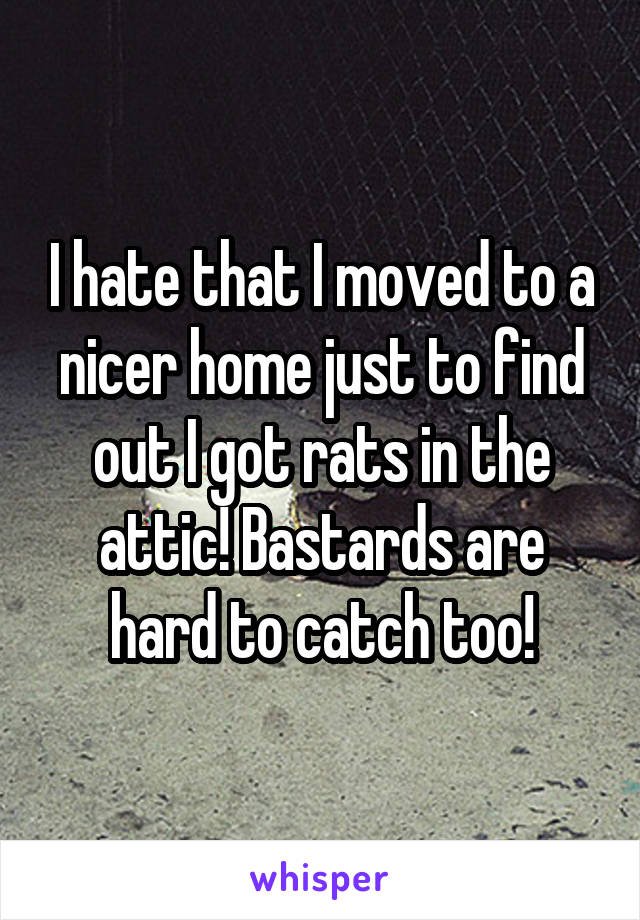 I hate that I moved to a nicer home just to find out I got rats in the attic! Bastards are hard to catch too!