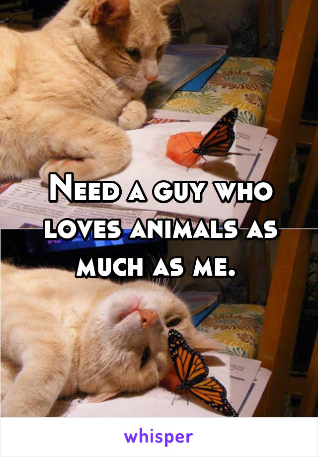 Need a guy who loves animals as much as me.