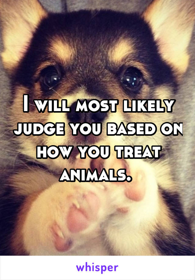 I will most likely judge you based on how you treat animals.