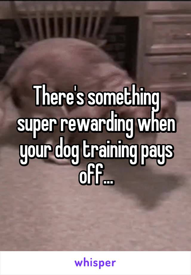 There's something super rewarding when your dog training pays off...