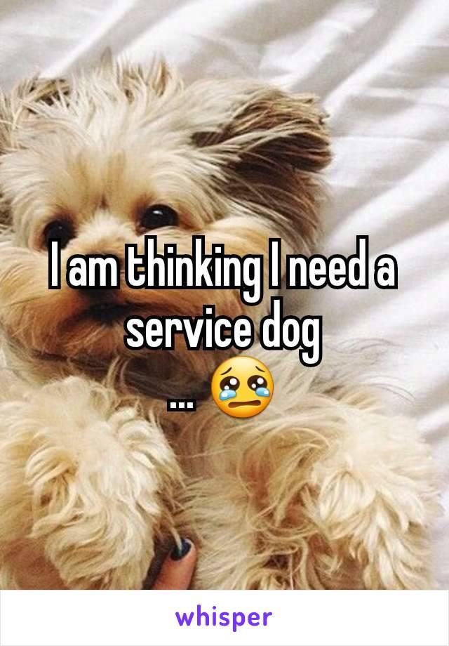 I am thinking I need a service dog ... 😢