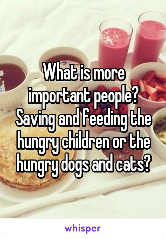 What is more important people? Saving and feeding the hungry children or the hungry dogs and cats?