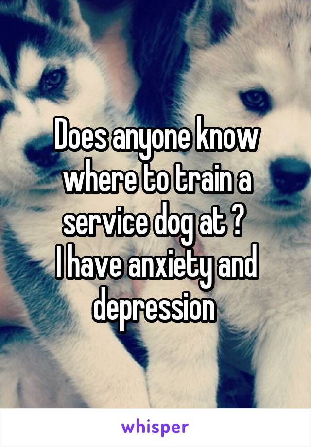 Does anyone know where to train a service dog at ?  I have anxiety and depression