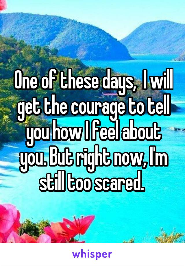 One of these days,  I will get the courage to tell you how I feel about you. But right now, I'm still too scared.