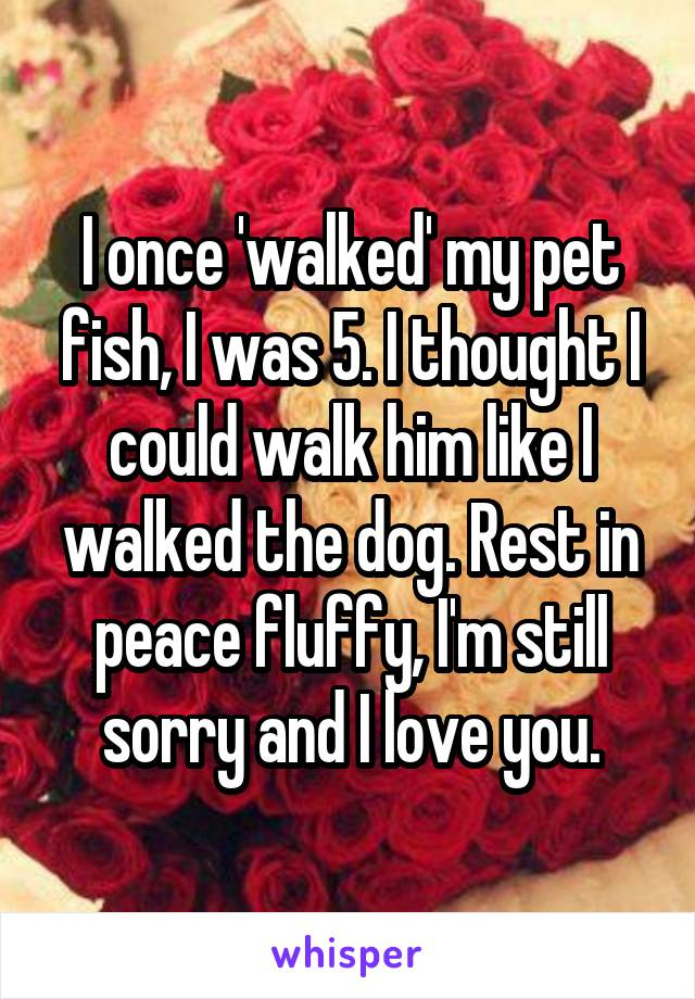 I once 'walked' my pet fish, I was 5. I thought I could walk him like I walked the dog. Rest in peace fluffy, I'm still sorry and I love you.