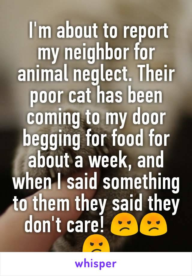 I'm about to report my neighbor for animal neglect. Their poor cat has been coming to my door begging for food for about a week, and when I said something to them they said they don't care! 😡😡😡