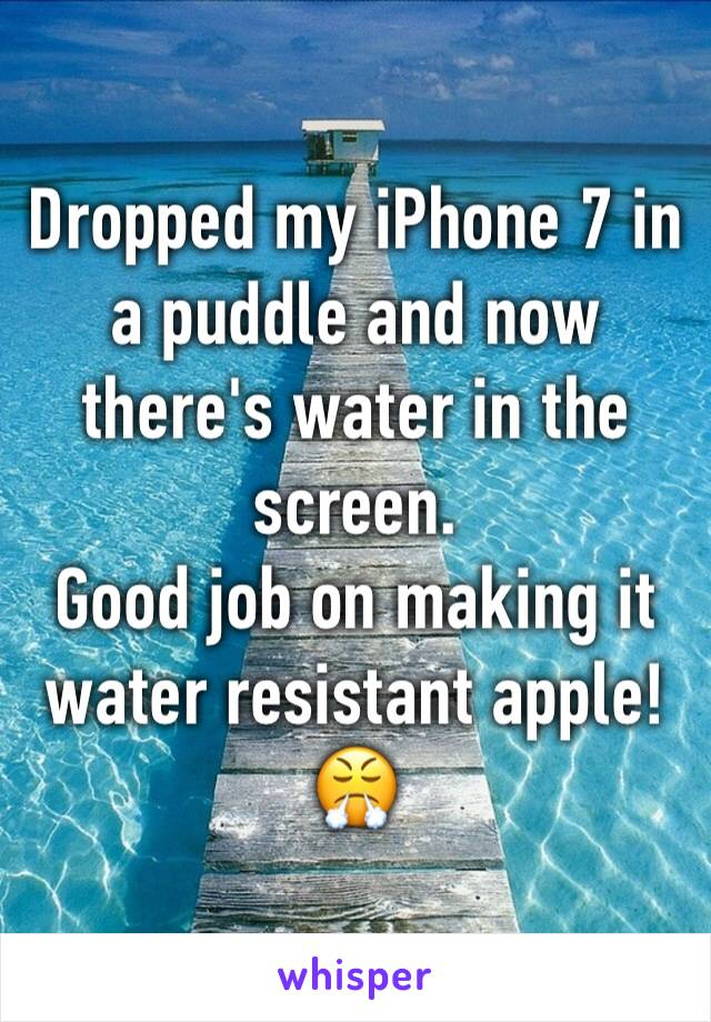 Dropped my iPhone 7 in a puddle and now there's water in the screen