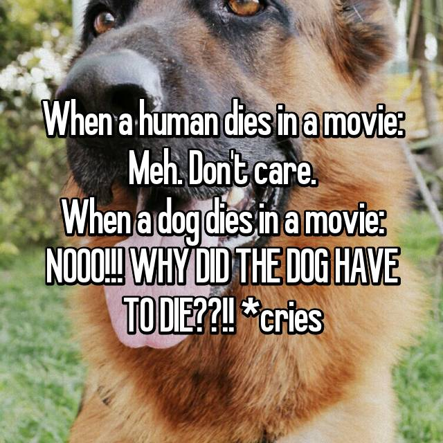 When a human dies in a movie: Meh  Don't care  When a dog
