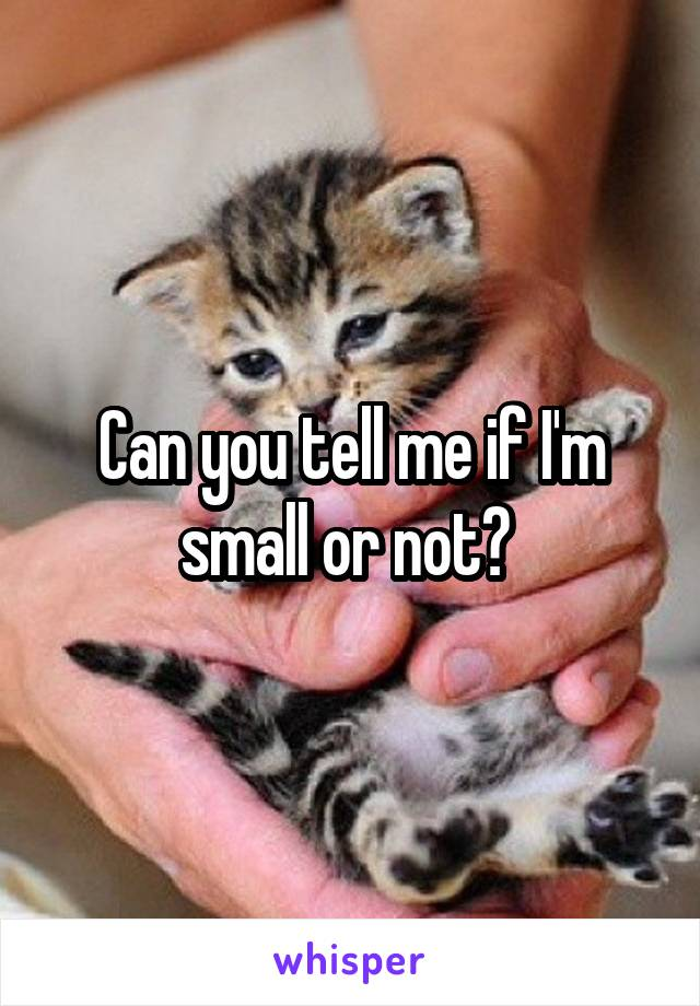Can you tell me if I'm small or not?