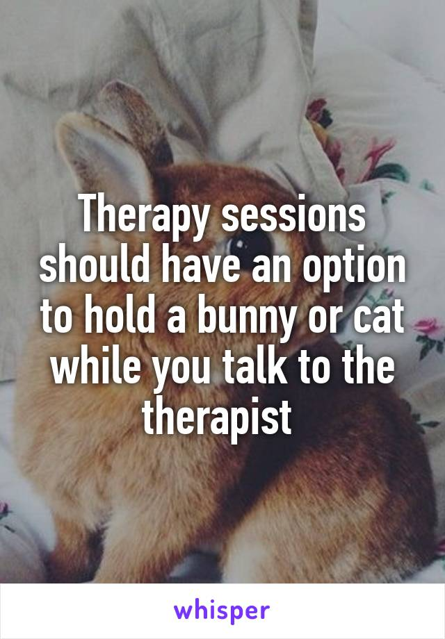 Therapy sessions should have an option to hold a bunny or cat while you talk to the therapist