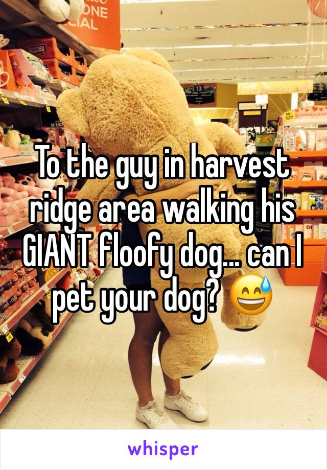 To the guy in harvest ridge area walking his GIANT floofy dog... can I pet your dog? 😅