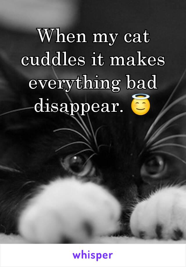 When my cat cuddles it makes everything bad disappear. 😇