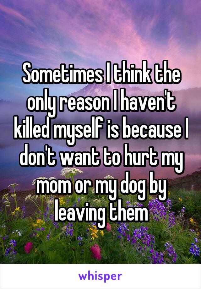 Sometimes I think the only reason I haven't killed myself is because I don't want to hurt my mom or my dog by leaving them