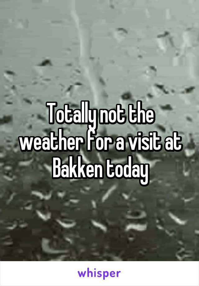 Totally not the weather for a visit at Bakken today