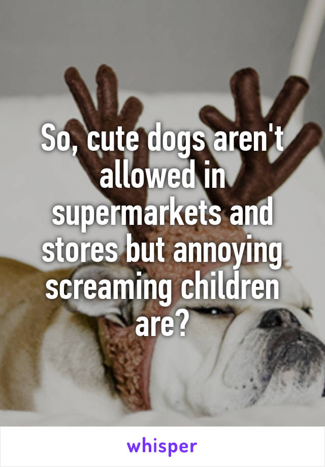 So, cute dogs aren't allowed in supermarkets and stores but annoying screaming children are?