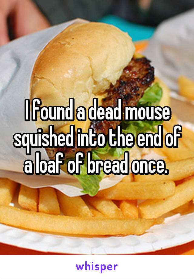 I found a dead mouse squished into the end of a loaf of bread once.
