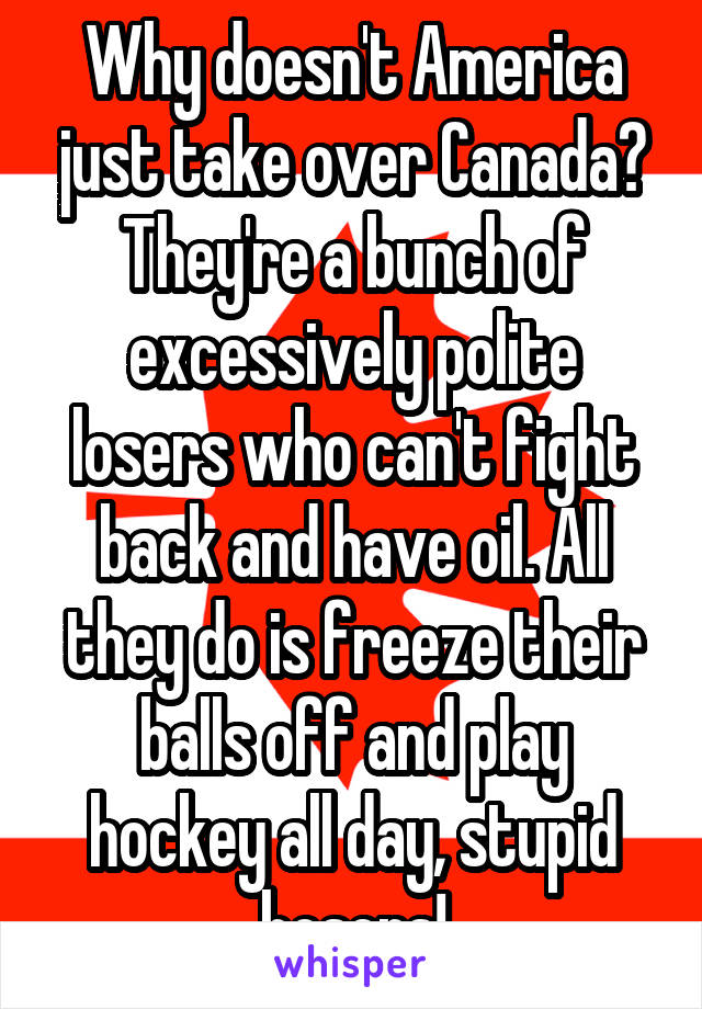 Why doesn't America just take over Canada? They're a bunch of excessively polite losers who can't fight back and have oil. All they do is freeze their balls off and play hockey all day, stupid hosers!