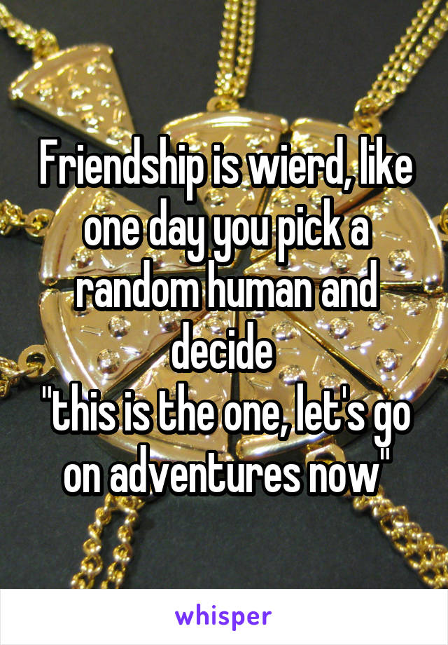 """Friendship is wierd, like one day you pick a random human and decide  """"this is the one, let's go on adventures now"""""""