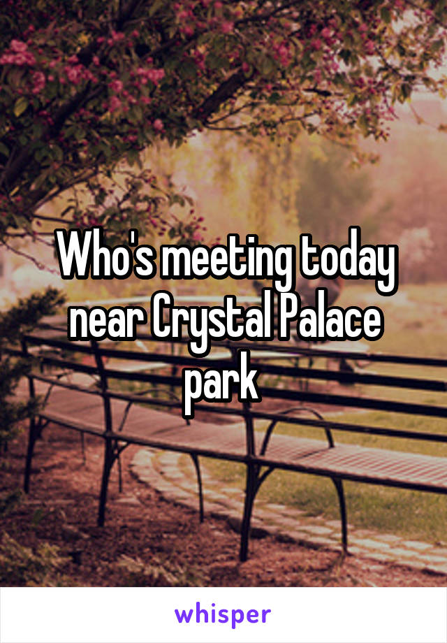 Who's meeting today near Crystal Palace park