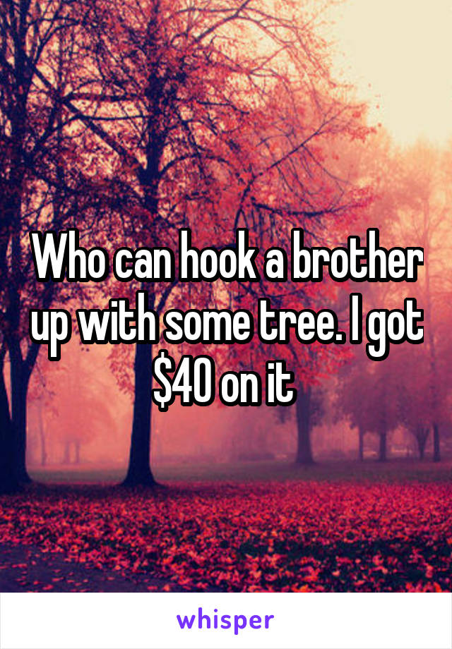 Who can hook a brother up with some tree. I got $40 on it