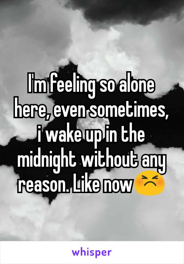 I'm feeling so alone here, even sometimes, i wake up in the midnight without any reason. Like now😣