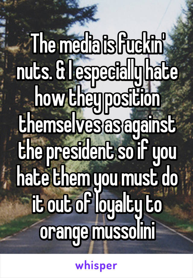 The media is fuckin' nuts. & I especially hate how they position themselves as against the president so if you hate them you must do it out of loyalty to orange mussolini