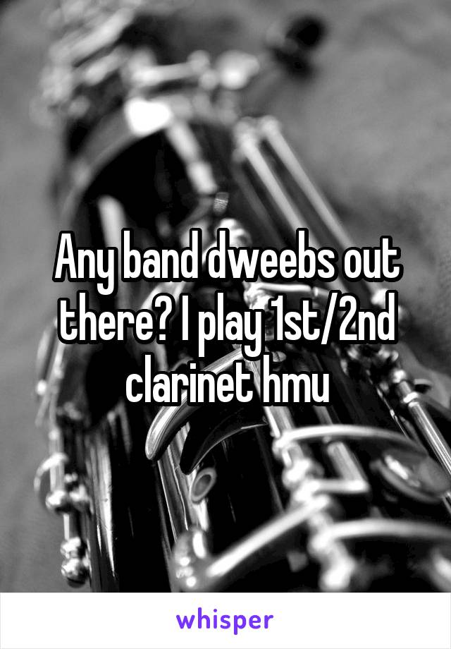 Any band dweebs out there? I play 1st/2nd clarinet hmu