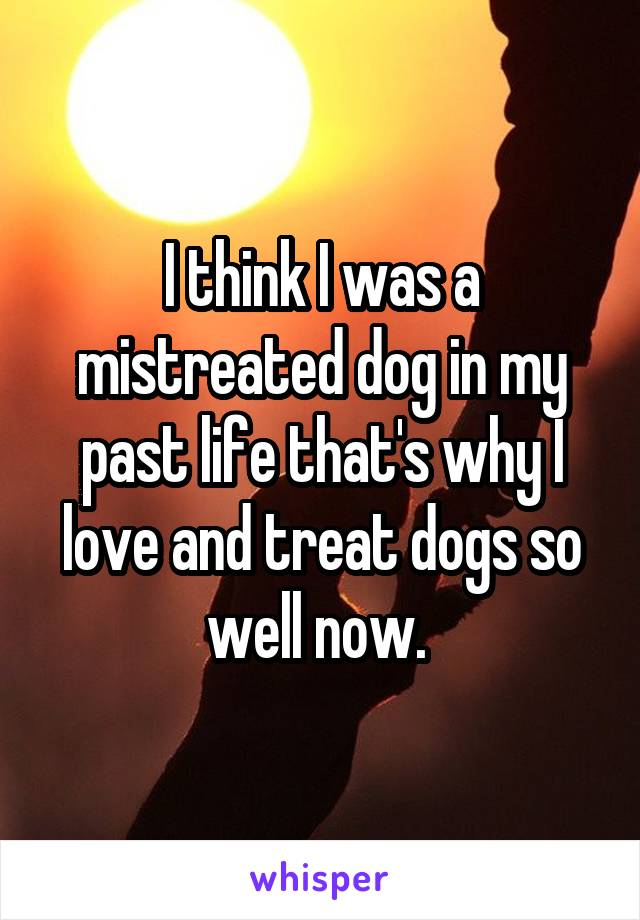 I Think I Was A Mistreated Dog In My Past Life Thats Why I Love And