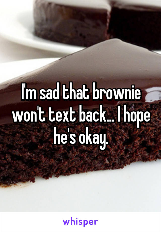 I'm sad that brownie won't text back... I hope he's okay.