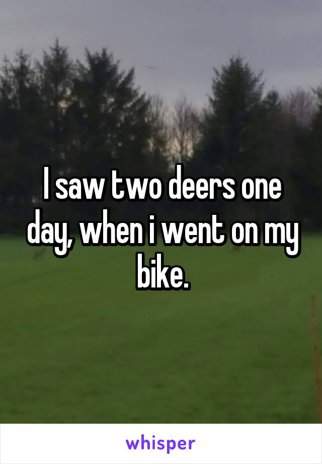 I saw two deers one day, when i went on my bike.