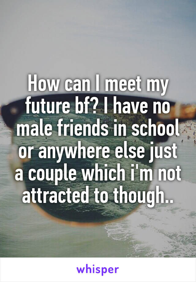 How can I meet my future bf? I have no male friends in school or anywhere else just a couple which i'm not attracted to though..