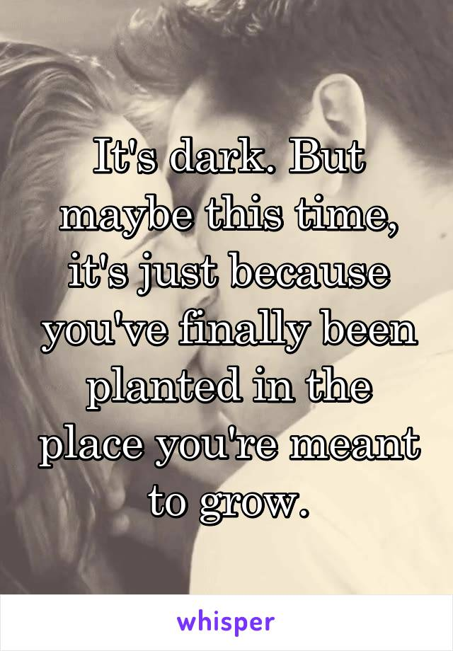 It's dark. But maybe this time, it's just because you've finally been planted in the place you're meant to grow.