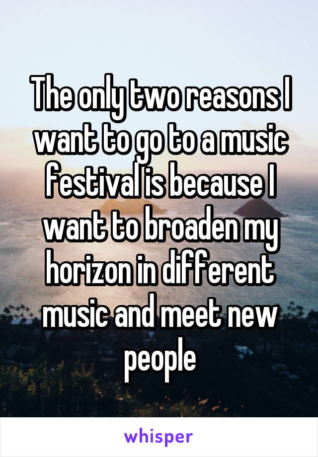 The only two reasons I want to go to a music festival is because I want to broaden my horizon in different music and meet new people