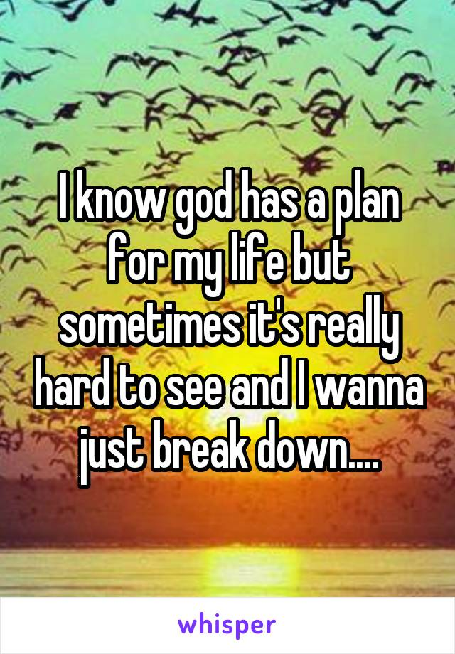 I know god has a plan for my life but sometimes it's really hard to see and I wanna just break down....