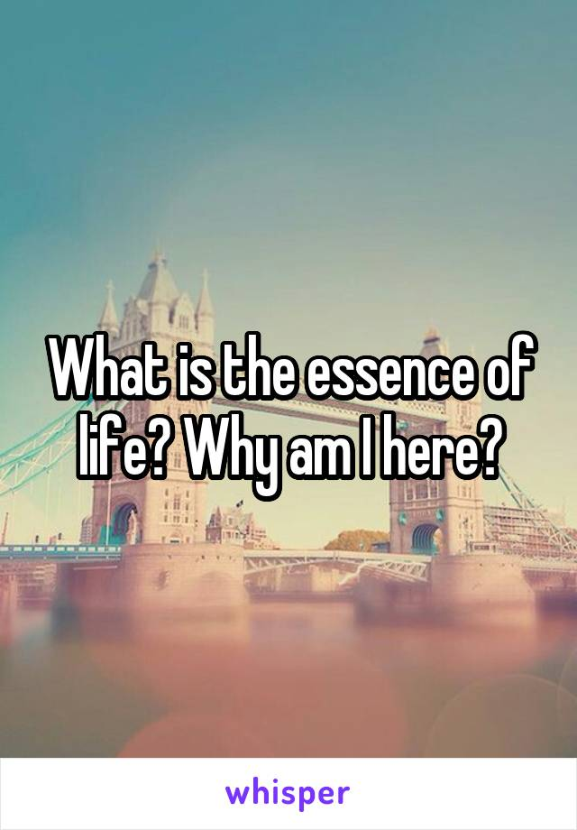 What is the essence of life? Why am I here?