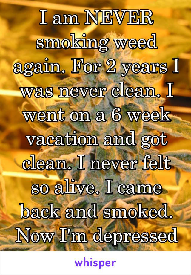I am NEVER smoking weed again. For 2 years I was never clean. I went on a 6 week vacation and got clean. I never felt so alive. I came back and smoked. Now I'm depressed again.
