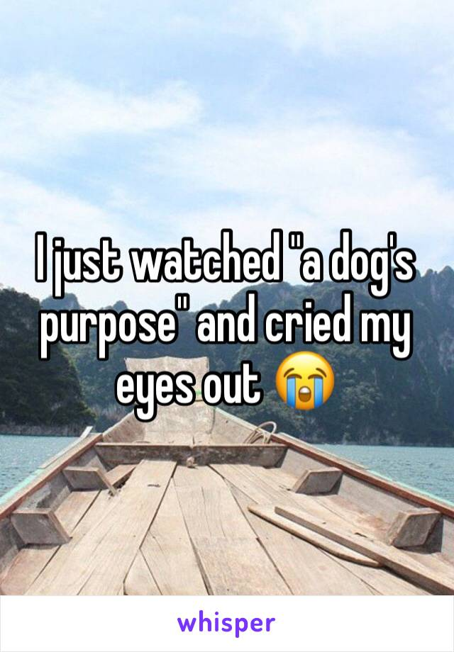 "I just watched ""a dog's purpose"" and cried my eyes out 😭"