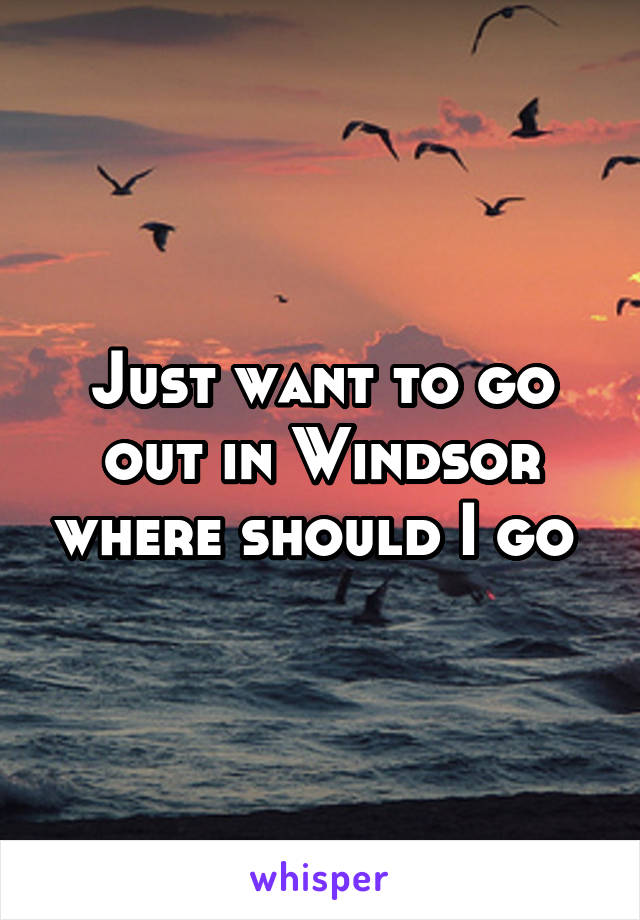 Just want to go out in Windsor where should I go