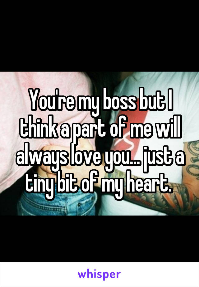 You're my boss but I think a part of me will always love you... just a tiny bit of my heart.