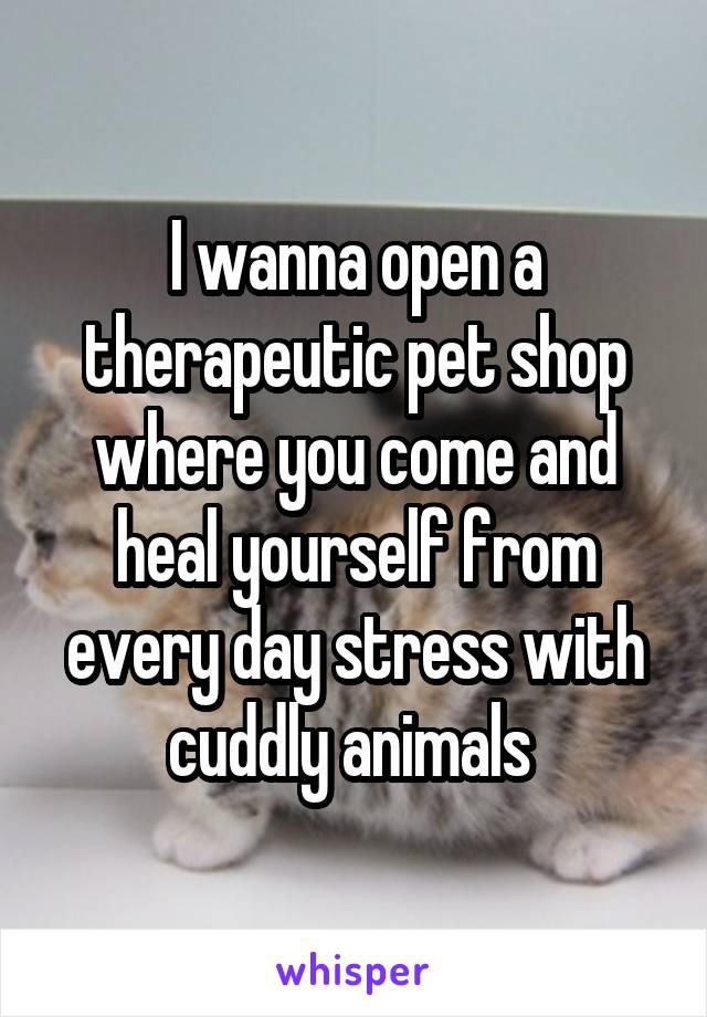 I wanna open a therapeutic pet shop where you come and heal yourself from every day stress with cuddly animals