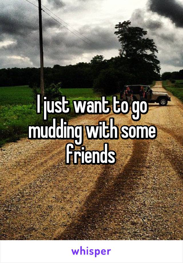 I just want to go mudding with some friends