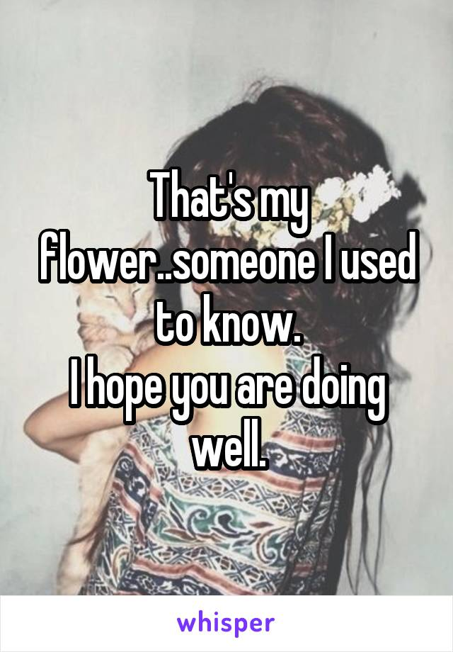 That's my flower..someone I used to know. I hope you are doing well.