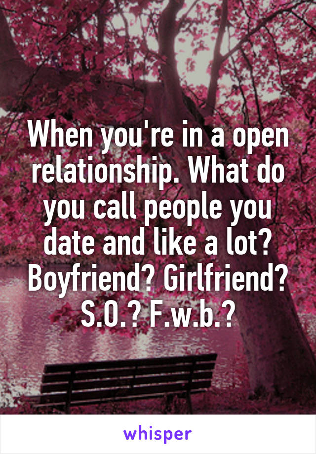 When you're in a open relationship. What do you call people you date and like a lot? Boyfriend? Girlfriend? S.O.? F.w.b.?