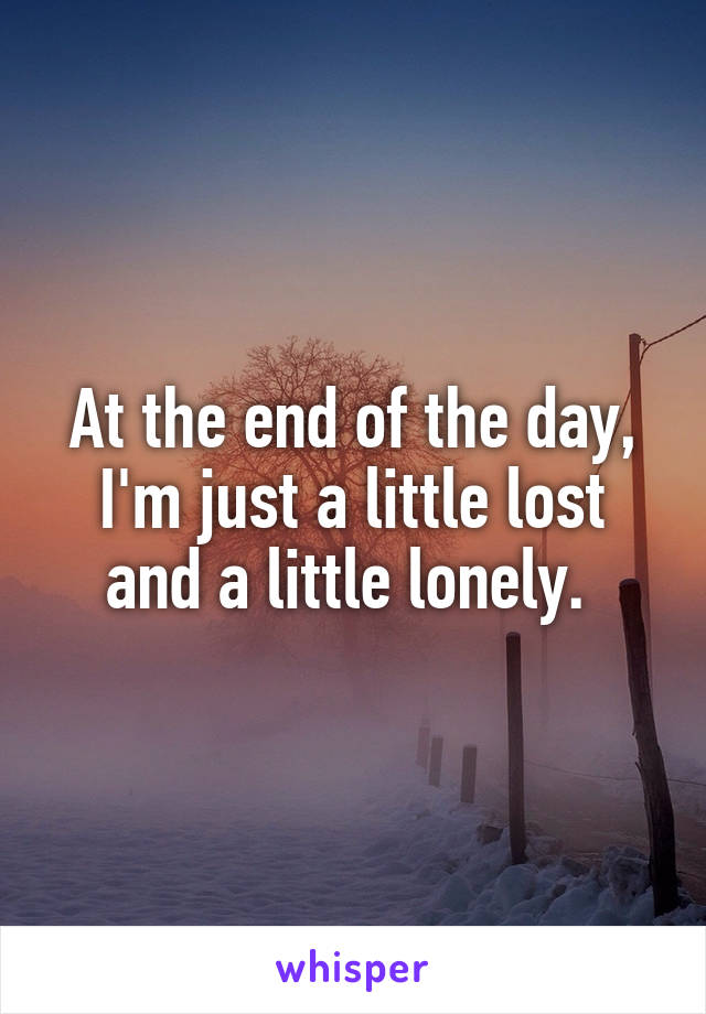 At the end of the day, I'm just a little lost and a little lonely.