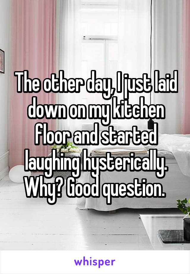 The other day, I just laid down on my kitchen floor and started laughing hysterically. Why? Good question.