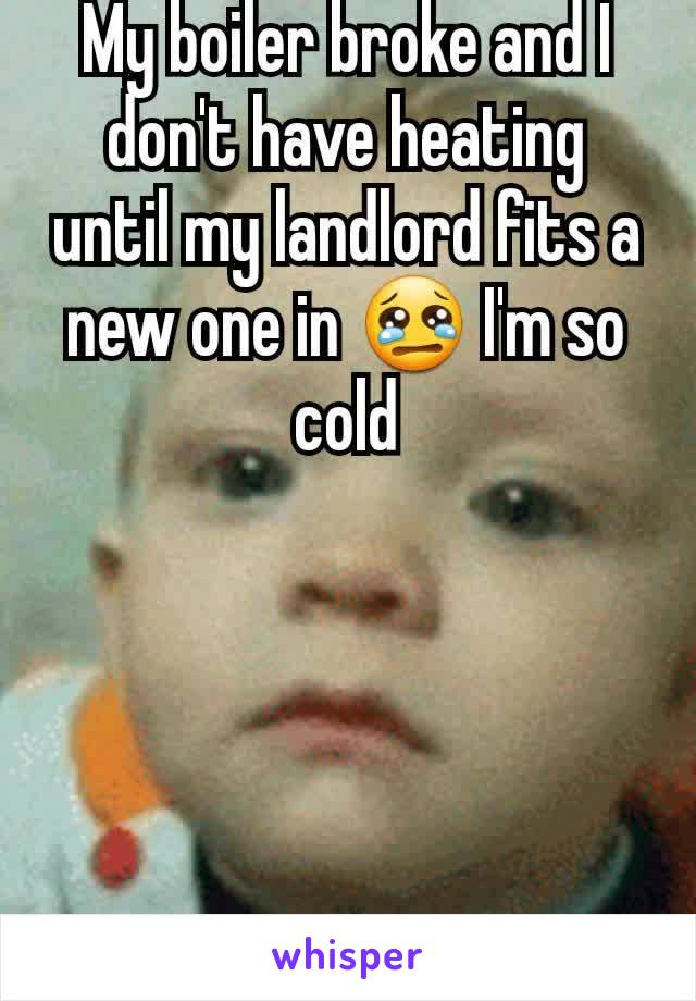 My boiler broke and I don't have heating until my landlord fits a new one in 😢 I'm so cold