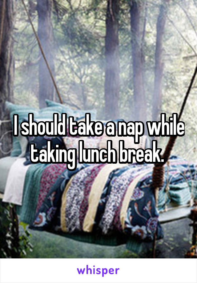 I should take a nap while taking lunch break.