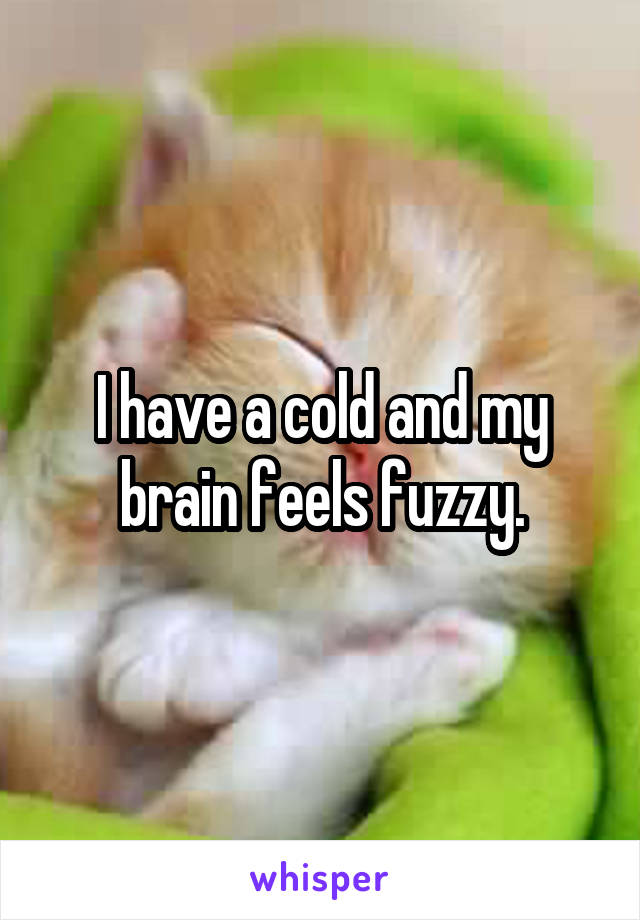 I have a cold and my brain feels fuzzy.